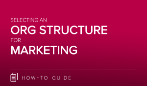 Org Structure Guide