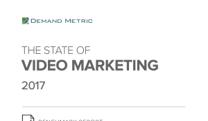 The State of Video Marketing 2017