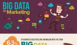 Big Data and Marketing Infographic