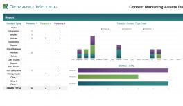 Case Study Template Demand Metric
