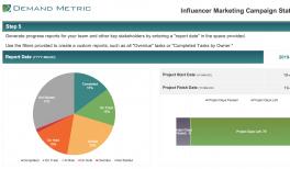 Influencer Marketing Campaign Plan & Timeline