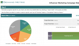 Influencer Marketing Campaign Plan & Timeline