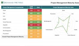 Project Portfolio Template   Project Portfolio Template Demand Metric