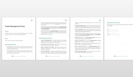project management issue log template