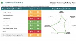 shopper marketing project plan demand metric