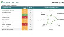 Social Listening System RFP Template   Demand Metric